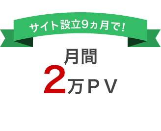 サイト設立9ヶ月で!月間2万PV