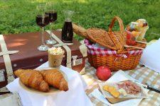 大人ピクニック!お酒とおつまみを知って太陽を浴びに出かけよう♪