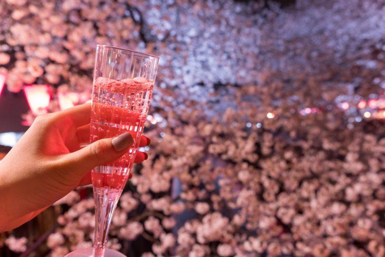 お花見では絶対飲みたいおすすめお酒とおつまみ