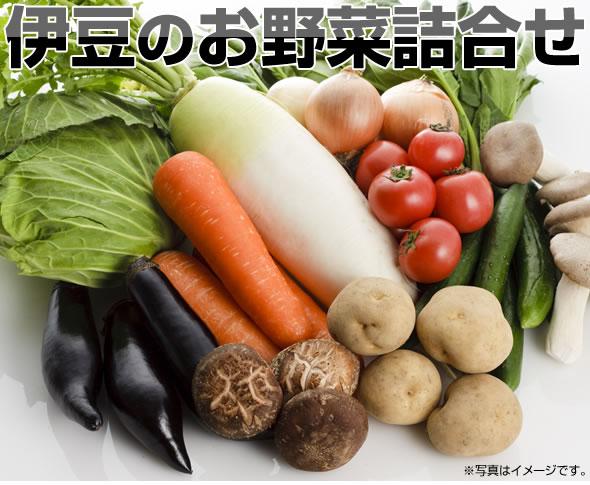 伊豆村の駅お野菜詰合せ(8~10品)