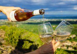 【ワイン】知ってると一目置かれる!「新世界」と「旧世界」の違いって?特徴とおすすめ