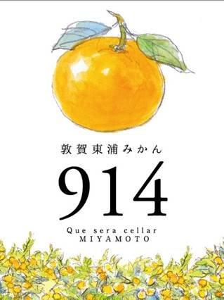 敦賀東浦みかん914ビール