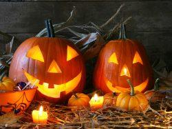 ハロウィンはぴったりなお酒でたのしもう♪限定やめずらしいかぼちゃに挑戦!