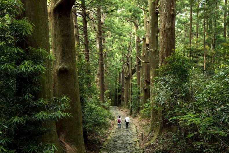 和歌山に旅行に行ったら買って帰りたい!!お酒のお土産15選