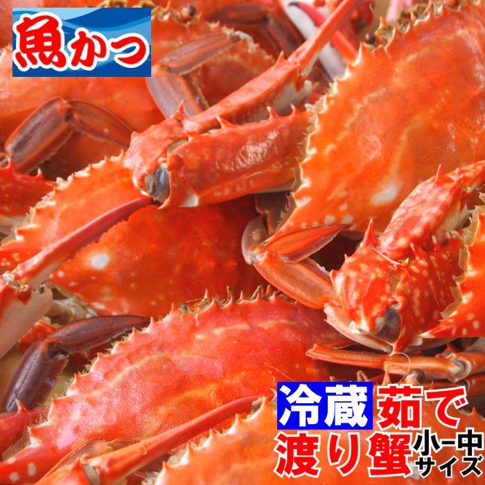 茹で(ゆで)渡り蟹 ワタリガニ  小、中3-4尾 送料無料 わたりがに、ガザミ