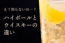 ハイボールとウイスキーの違いは?おいしいの作り方の3ステップはこれだ!!