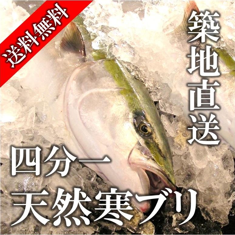 寒ブリ 天然ブリ 日本海産他