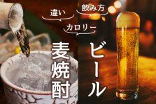 麦焼酎とビールの違いとは?カロリーと飲み方も比べてみた!
