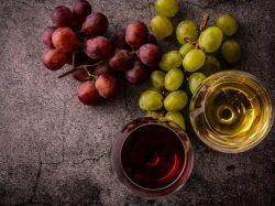 知らないと笑われる?リキュールとワインの違いを知る飲み比べのコツ!