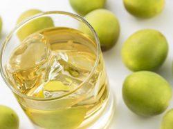 え?梅酒をテキーラで作るとおいしいってホント?感動激ウマレシピ!