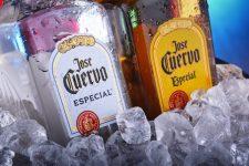 初心者でもおいしい!メキシコのテキーラを味わう鉄板銘柄4選!